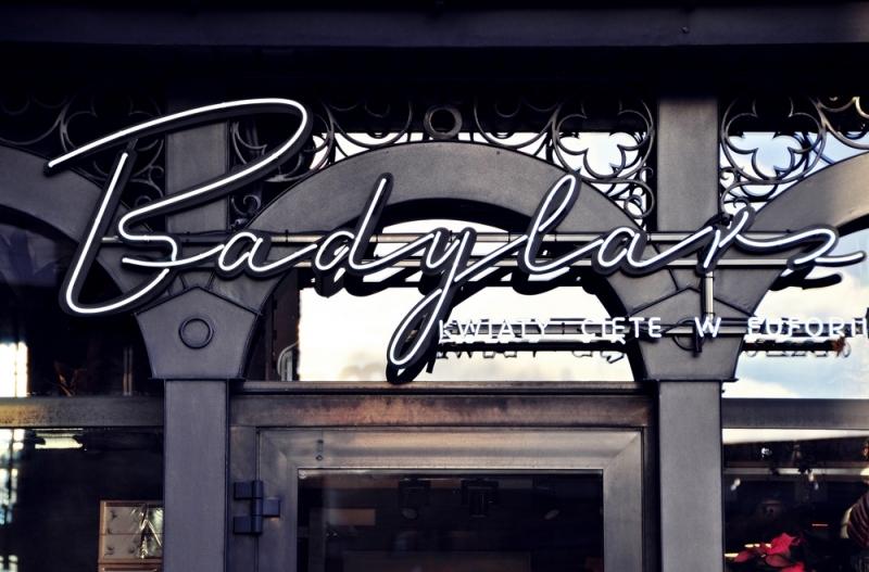 projekt officyna badylarz 211