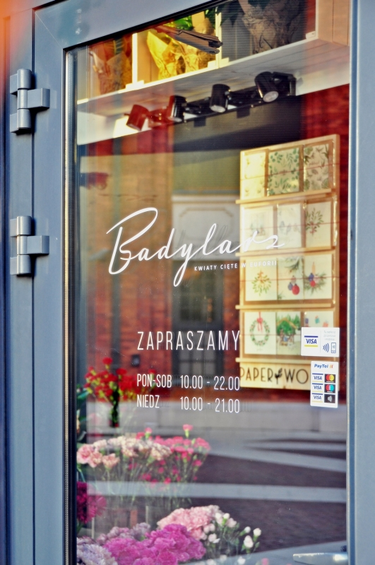 projekt officyna badylarz 231